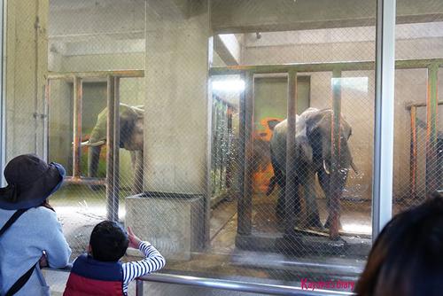 20180318 zoo1.jpg