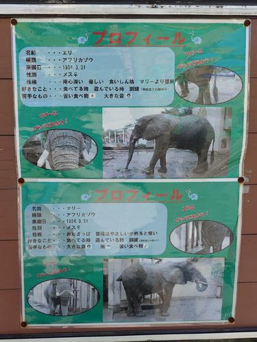 20180318 zoo12.jpg