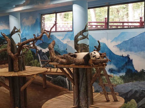 20181016 zoo 1-8.jpg