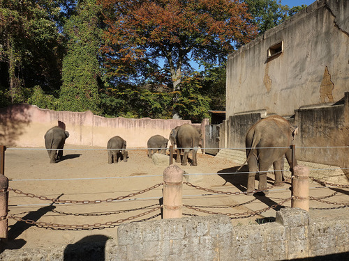 20190114 h zoo 6.jpg