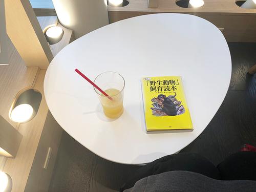 20190221 cafe2.jpg