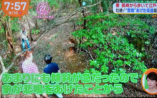20170916 tv4.jpg