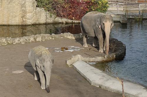20171028 zoo1.jpg