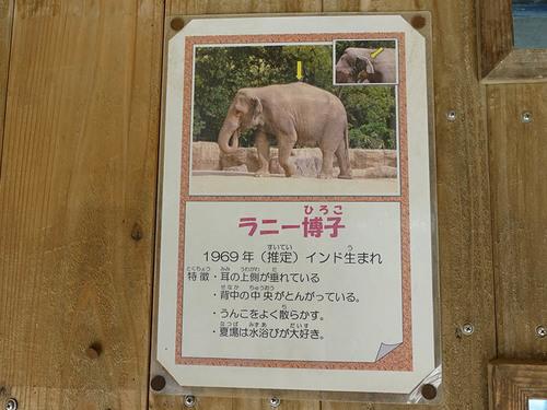 20171217 zoo14.jpg