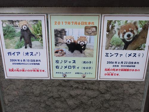 20180424 zoo15.jpg