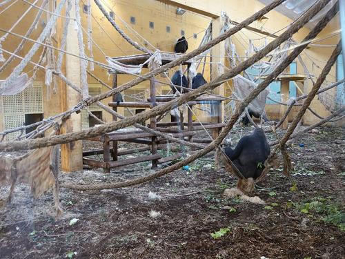 20180502 zoo cabarceno 1-25.jpg