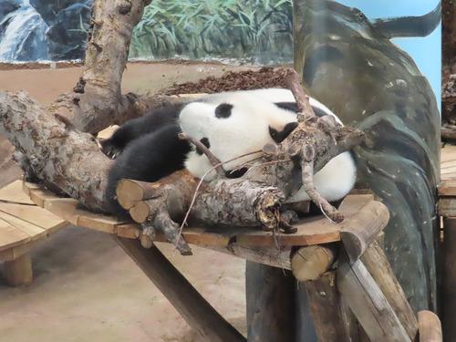 20181016 zoo 1-12.jpg