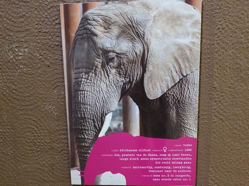 20181016 zoo oli6.jpg