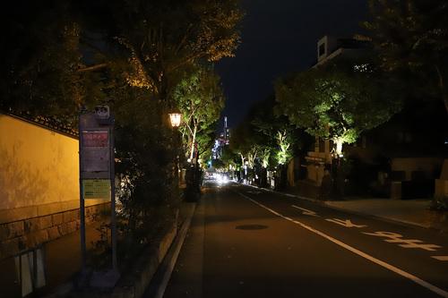 201900913 kitano10.jpg