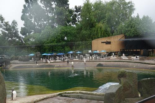 20190624 zoo16.jpg