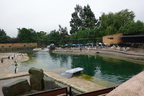 20190624 zoo17.jpg
