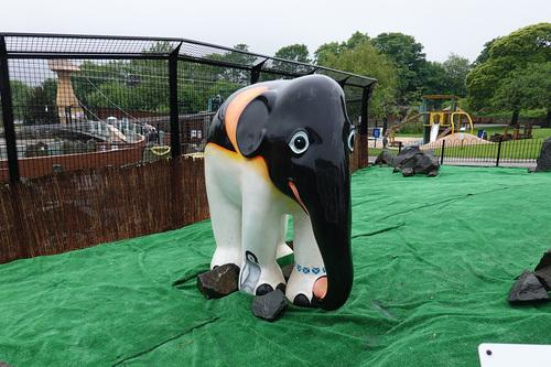 20190624 zoo20.jpg