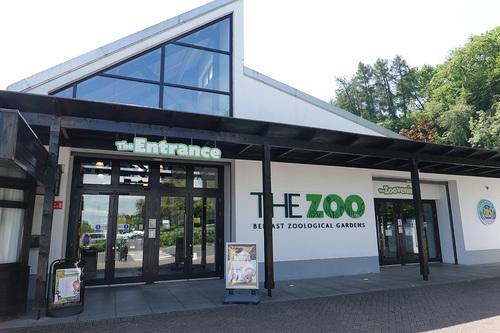20190626 zoo 1-01.jpg