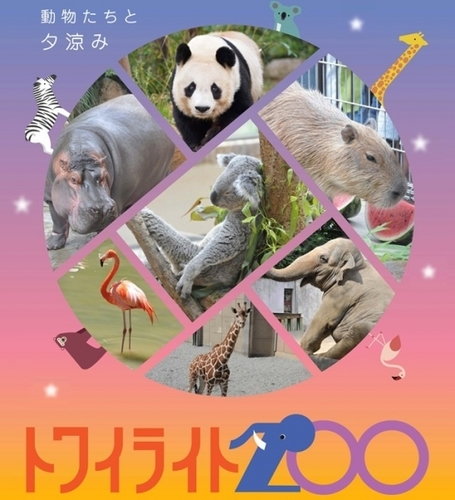 20190811 zoo3.jpeg