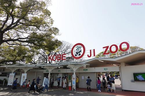 20200321 zoo1.jpg