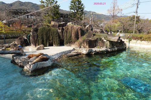 20200321 zoo14.jpg