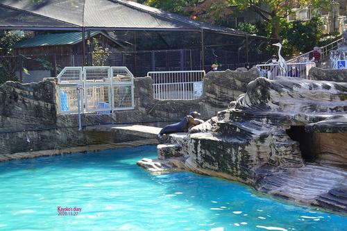 20201127 zoo 31.jpg