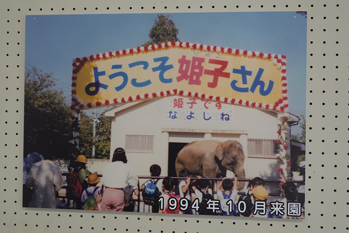 20201218 himeko 24.jpg