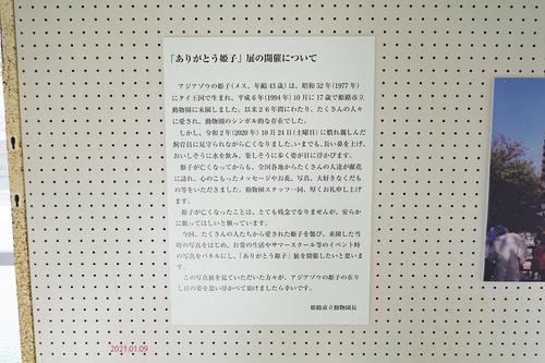 20210109 himeji21.jpg