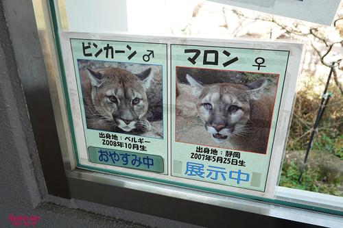 20210319 zoo16.jpg