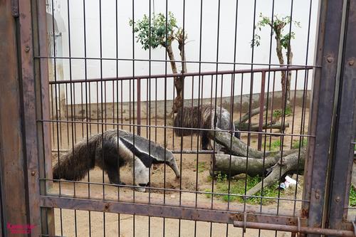 20210321 zoo22.jpg