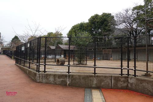 20210321 zoo24.jpg