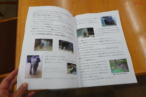 20210321 zoo6.jpg