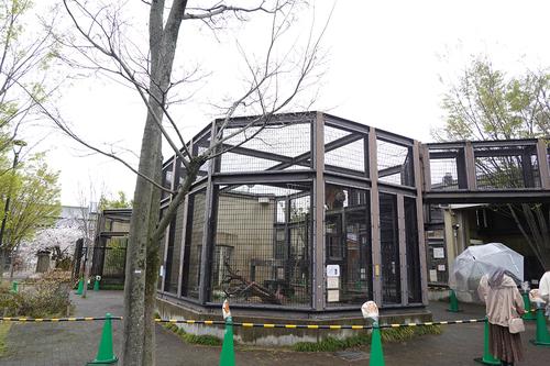 20210328 zoo18.jpg