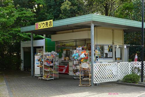 20210414 hamakosan21.jpg