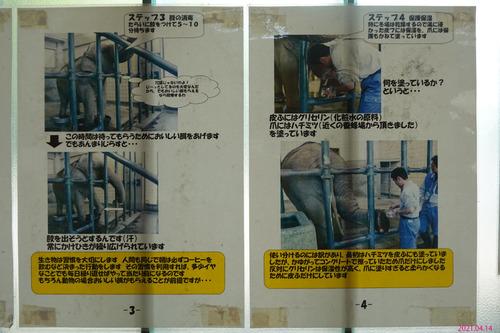 20210414 hamakosan32.jpg