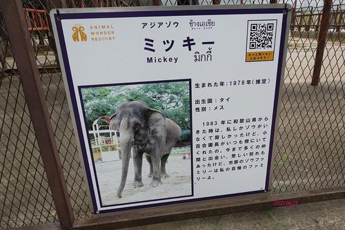 20210623 zoo11 miky.jpg