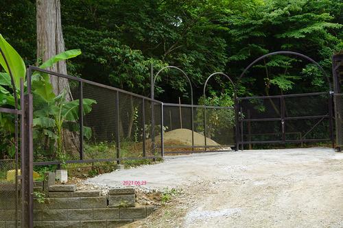 20210623 zoo18 ohaka1.jpg